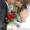 Проффесиональная Фото-видео съемка,  оформление шарами #708507