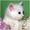 Котик с голубыми глазами  #1137883