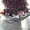 биозавивка волос #1338090