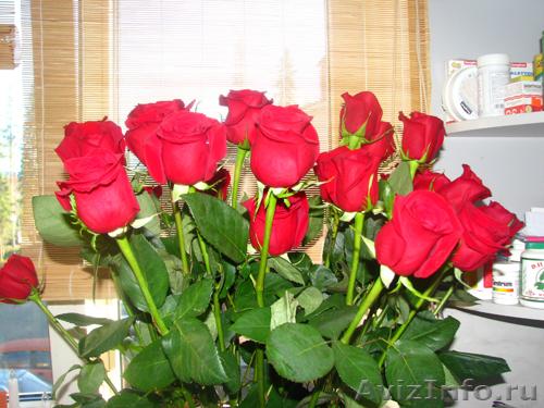 Доставка букетов роза оренбург цветы оптом невесты