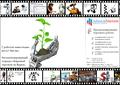 Программирование торгового робота - Изображение #10, Объявление #815468